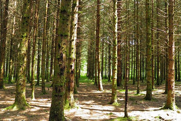 Découvrir le Jura - Village Vacances Neige & Plein Air