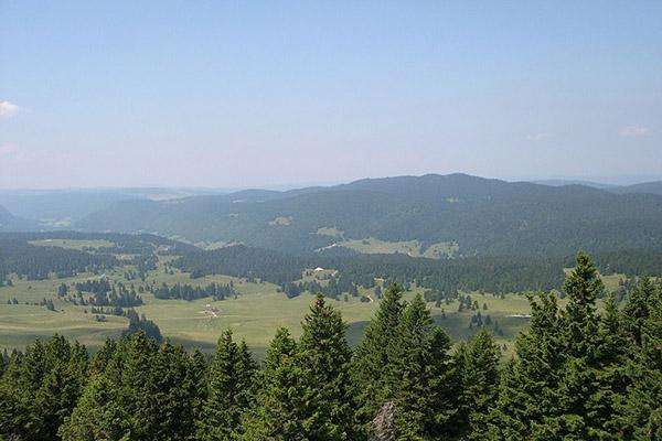 La forêt du Massacre - Village Vacances Neige & Plein Air